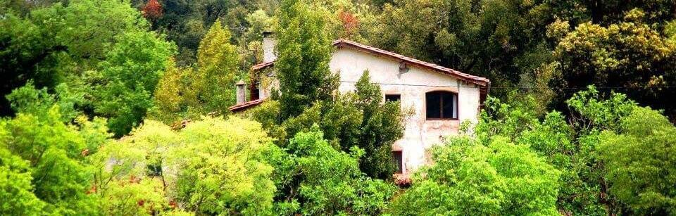 Casa Jardin De Paz Fondo Inicio